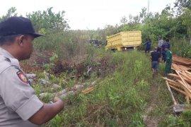 Lahan penyelamat orang utan Kalimantan dirambah sejumlah orang