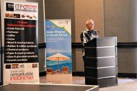 Indonesia gaet wisatawan milennial Afrika  Selatan