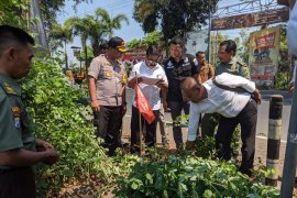 JPIK apresiasi langkah polisi Tulungagung usut jaringan maling sonokeling