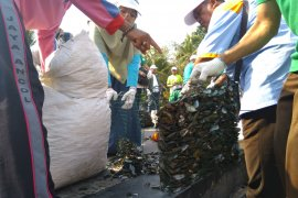 Peneliti tidak anjurkan anak-anak konsumsi kerang hijau dari Teluk Jakarta