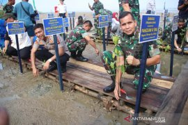 Pangdam Sriwijaya tanam mangrove di Tanjung Api Api