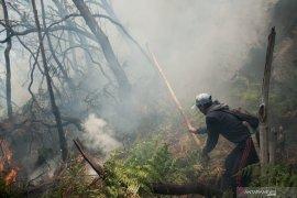 Diduga dipicu puntung rokok, kebakaran lahan di Kawah Putih Ciwidey