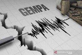 Gempa tektonik  5,4  guncang Jailolo
