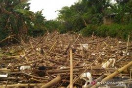 Sungai Cikeas di Jatiasih Bekasi tertutup  sampah bambu