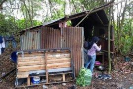 Keluarga ini tinggal di gubuk beralaskan tanah, karena ketiadaan biaya dua anaknya terpaksa putus sekolah