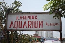 Pemukiman di bekas laboratorium Teluk Jakarta itu dinamai Kampung Akuarium