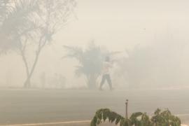 Kabut asap akibat karhutla landa wilayah Mesuji Page 1 Small