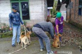 Warga Rejang Lebong pemilik hewan peliharaan diimbau aktif vaksin HPR