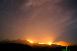 Kebakaran terjadi di areal hutan di Pelawangan Senaru Gunung Rinjani