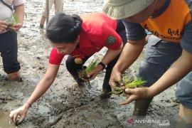 Tjhai Chui Mie minta petani tingkatkan produksi pertanian meski di tengah pandemi
