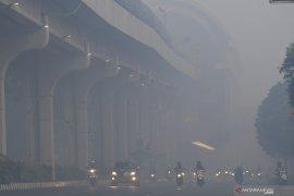 BPS ungkap kebakaran hutan dan lahan pengaruhi perekonomian Sumatera Selatan