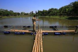 Hutan kota Balas Klumprik Surabaya bakal dilengkapi fasilitas  outbound