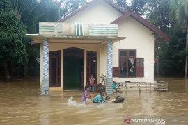 1.067 jiwa warga Aceh Barat terdampak banjir