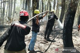 ACT bantu padamkan kebakaran hutan lahan
