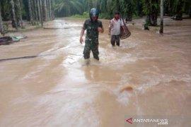 Ini dampak banjir Aceh Jaya terhadap sektor pertanian