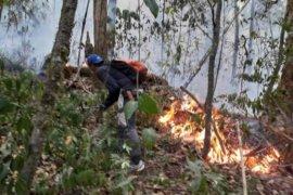 Kebakaran kawasan Gunung Ciremai sudah hanguskan lahan 150 hektare