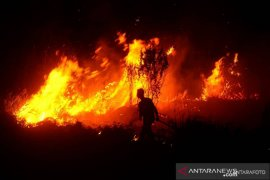 Kebakaran hanguskan puluhan kios di Pasar Jatisari Karawang