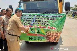 Bupati Cirebon lepas ekspor mangga ke negara-negara Timur Tengah