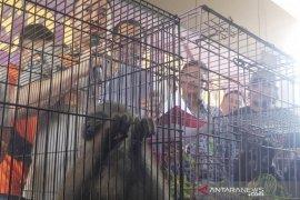 Polda Jawa Barat tangkap pelaku jual beli satwa yang dilindungi