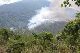 BPBD Kuningan kerahkan tim padamkan kebakaran kawasan di kawasan Gunung Ciremai