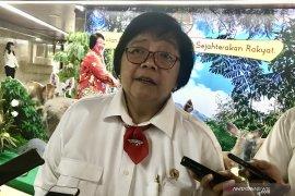 Siti Nurbaya: Kedepankan peran BMKG dan TMC  atasi karhutla