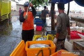 Nelayan Cianjur keluhkan harga ikan merosot tajam