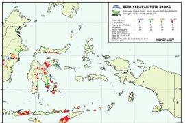Miliki lahan gambut di Selatan Papua  penyebab munculnya titik api