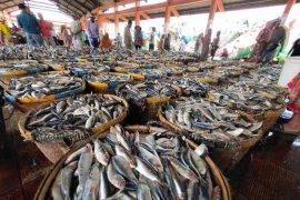 Dinas KP Indramayu catat 15.717 nelayan dilindungi asuransi jiwa