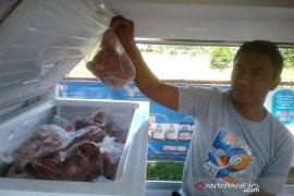 Bulog Bengkulu terima 28 ton daging kerbau beku