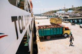 Empat tahun Tol Laut, Kapal Pelni angkut 40.310 sapi dari NTT ke Jakarta