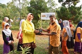 UI kenalkan budidaya tanaman rempah-rempah untuk tata lahan desa