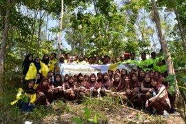 "UI kembangkan ""Arboretum Durio Botanica"" di Sukabumi"