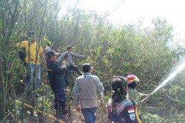 Kebakaran landa delapan hektare hutan di Nyalindung Sukabumi