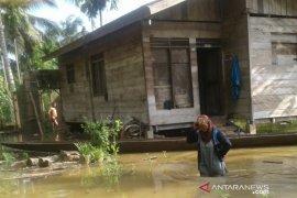 Banjir Daerah Aliran Sungai Tamiang meluas hingga landa 20 desa