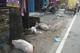 Tak hanya dibuang ke sungai, bangkai babi juga dibuang di jalanan