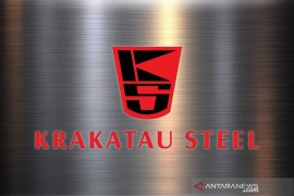 Krakatau Steel calls for govt to curb steel imports