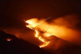 Gunung Lawu terbakar