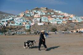 Afghanistan temukan kasus pertama virus  corona