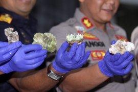 Bea Cukai Juanda gagalkan penyelundupan ratusan karang hidup