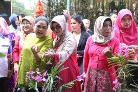 Pemkab gelar National Borneo Orchid Show Tala 2019