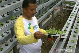 Kota Sukabumi optimalkan produksi pangan lokal