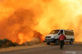 Kebakaran hutan California, Trump umumkan deklarasi bencana besar