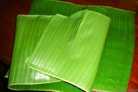 Tanah Bumbu prohibits use of plastics as food packaging