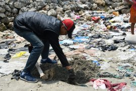 Orang kurang waras diduga bantai belasan kucing di Lampung