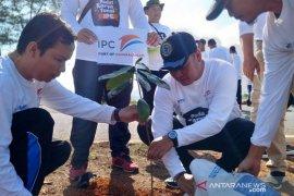 Antara TV - IPC Peduli tanam pohon dan bersihkan Pantai Air Anyir