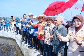 Menteri Kelautan optimistis kembalikan industri udang di Indonesia