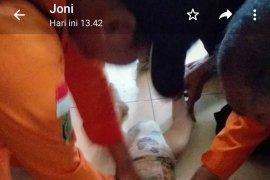 Hanya 50 meter dari rumahnya, balita 1,3 tahun in ditemukan meninggal di parit