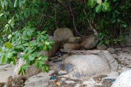 Polisi temukan kerangka manusia di pesisir Bintan