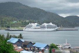 Ini cara Jepang antisipasi virus corona di kapal pesiar