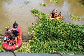 Pemkab Garut manfaatkan eceng gondok di Sungai Cimanuk untuk pakan ternak dan kerajinan